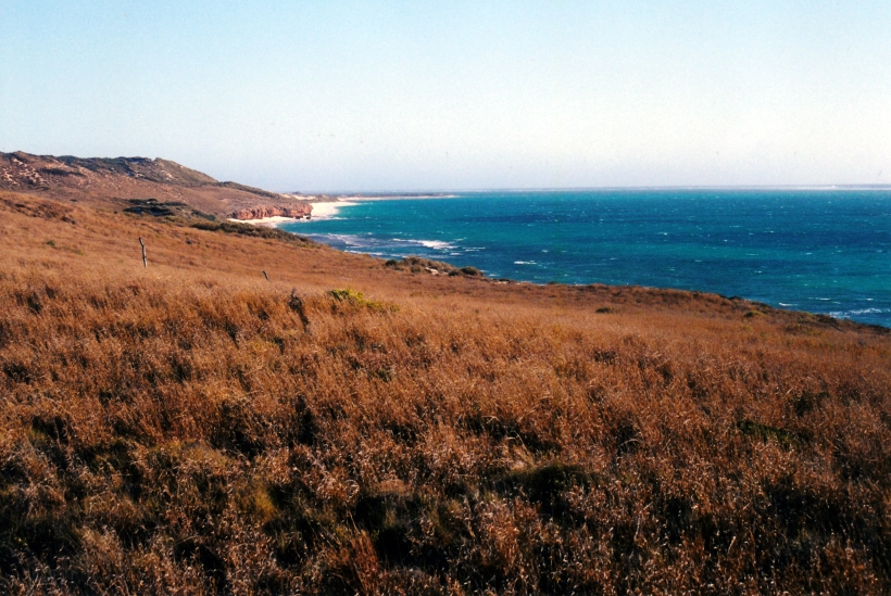 10-30-2000 coast near Coral Bay.jpg