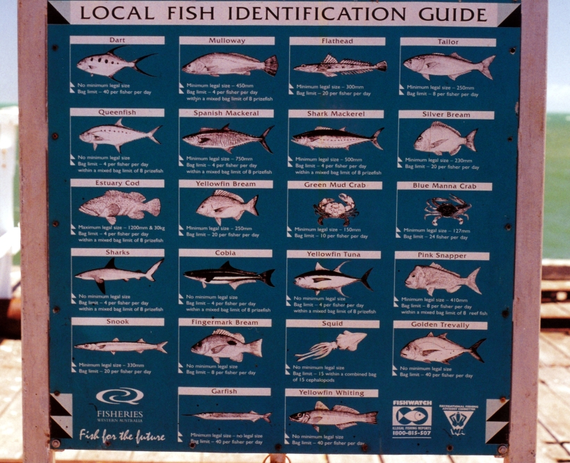 11-03-2000 sign One Mile Jetty.jpg