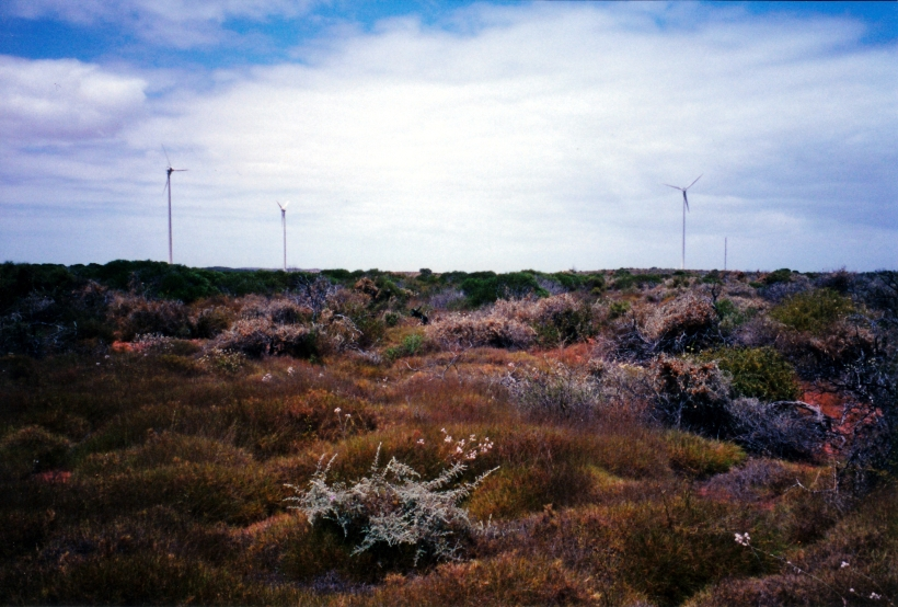 11-07-2000 02 wind power.jpg