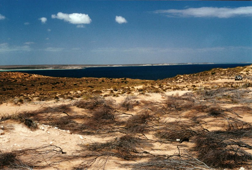 11-08-2000 shark bay heritage area.jpg