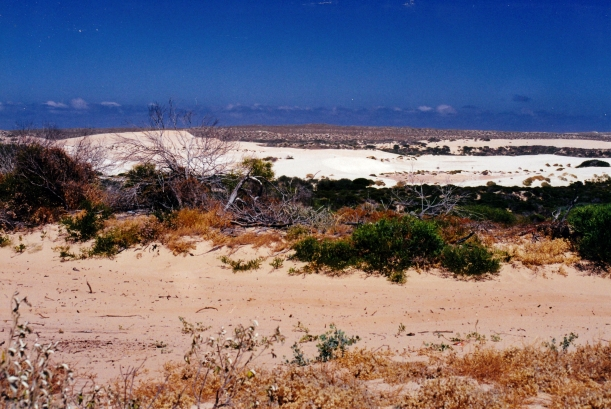 11-10-2000 04 track & dunes