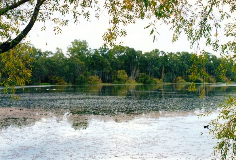 04-27-2001 lake by caravan park in shepparton.jpg