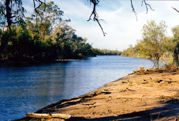 09-24-2001 paroo river by our currawinya camp.jpg