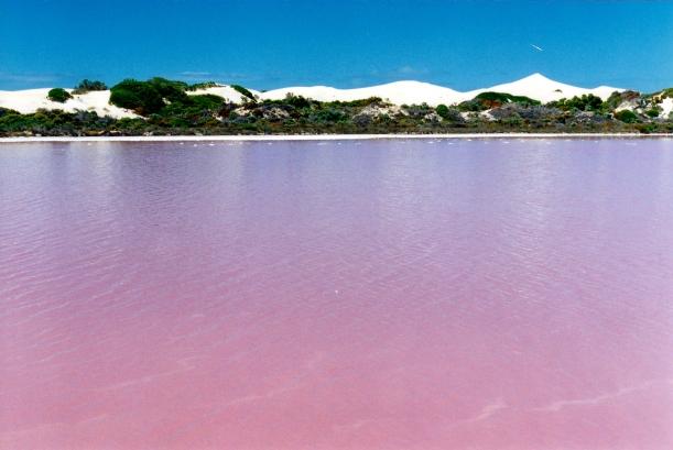 12-01-2000 06 pink lakes