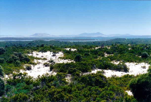 12-04-2000 01 View from Yangie Bay hill.jpg