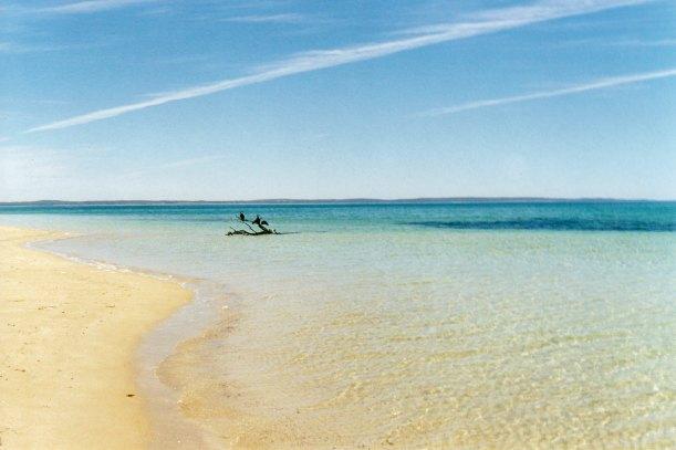 12-04-2000 05 Seven Mile beach Coffin Bay NP.jpg
