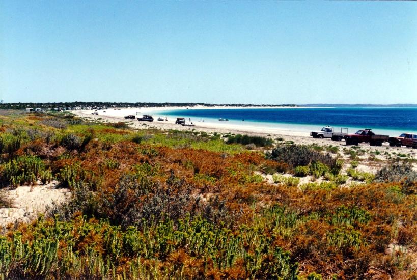 12-09-2000 05 Farm Beach.jpg