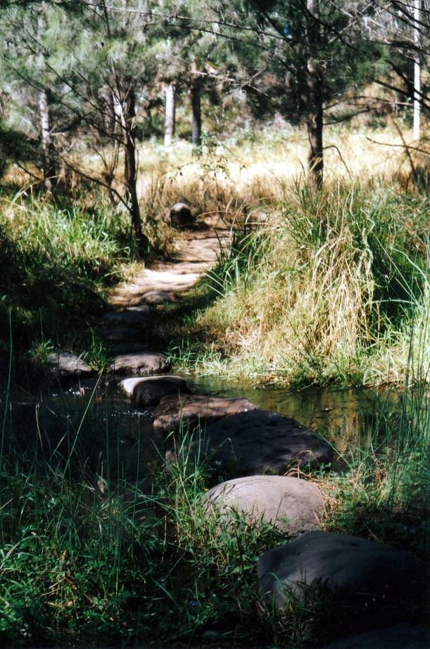 04-30-2002 crossing on stones.jpg