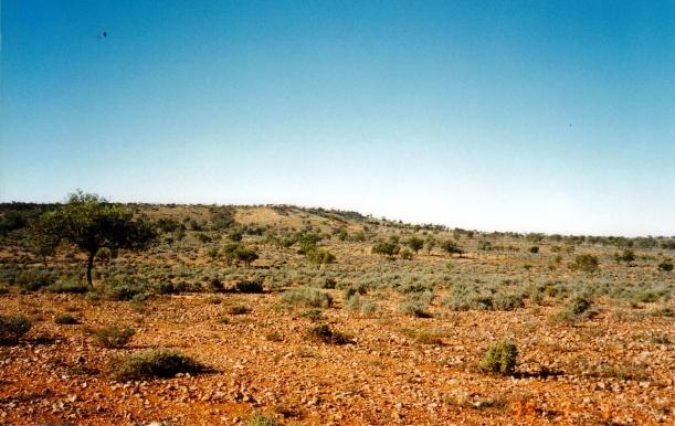 10-03-2001 arid.jpg