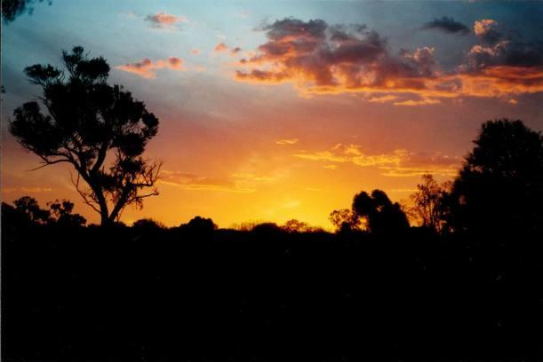 Resize of 04-12-2002 leopardwood sunset