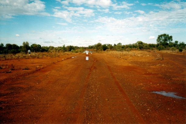 Resize of 04-16-2002 leopardwood road.jpg