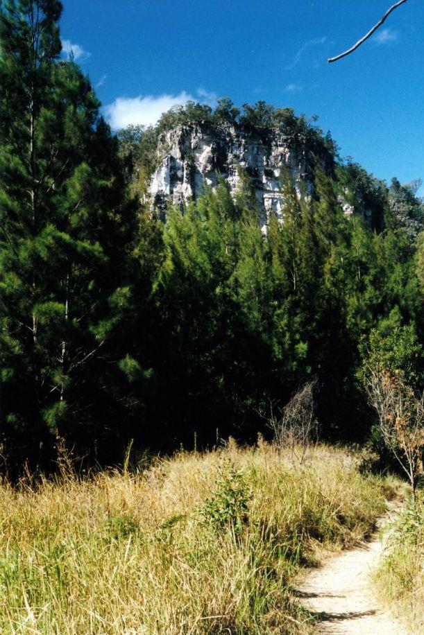 Resize of 04-30-2002 05 gorge pines.jpg