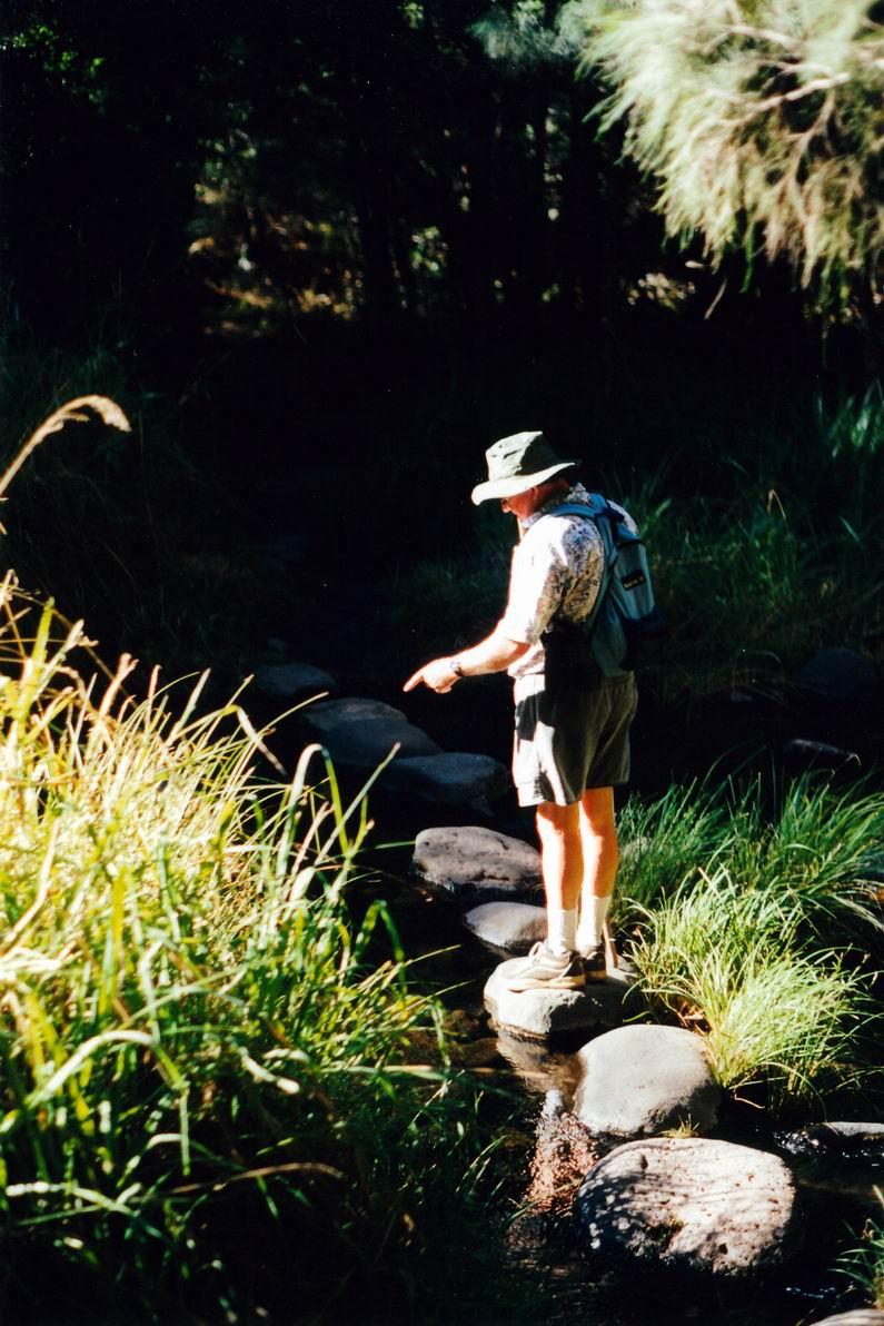Resize of 05-02-2002 11 creek crossing.jpg