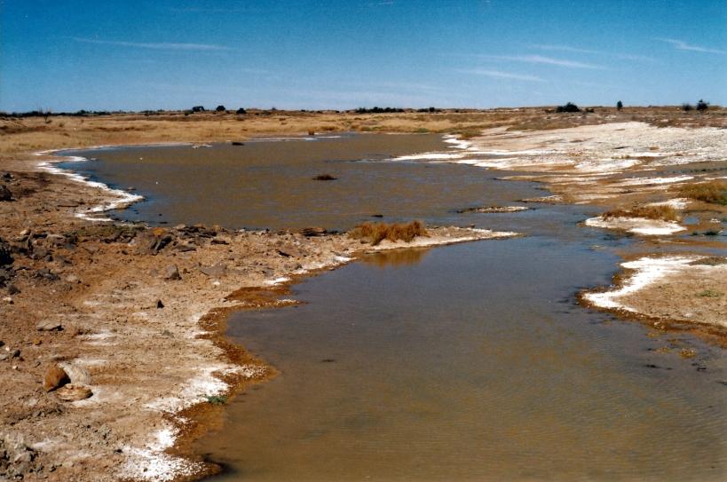 06-03-2002 04 Elizabeth Springs outflow