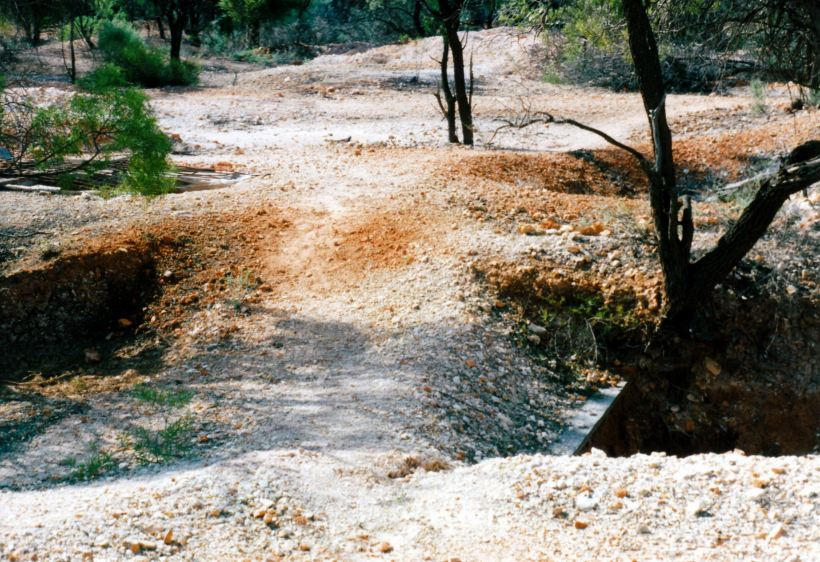 Resize of 05-18-2002 track between old holes Duck Creek.jpg