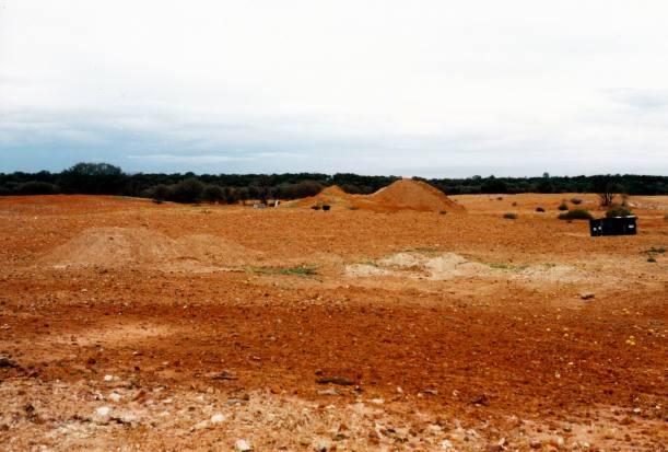 Resize of 05-23-2002 deuces wild pinkilla