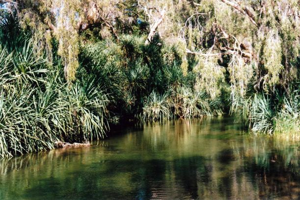 Resize of 06-10-2002 04 Gregory River at bridge camp