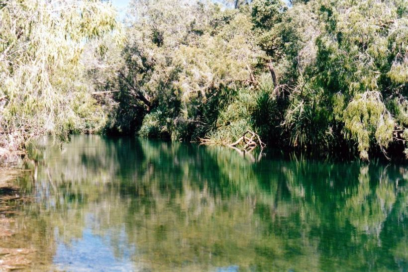 Resize of 06-11-2002 06 Gregory River upstream reflections