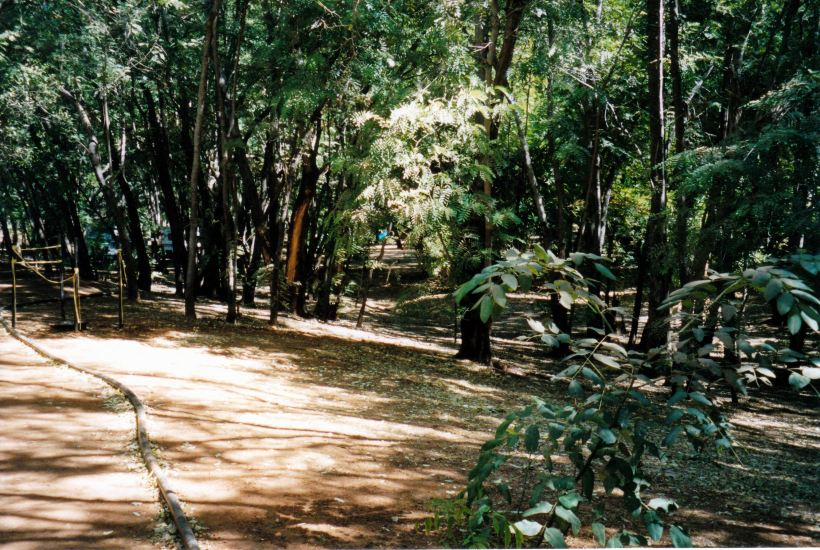 Resize of 06-29-2002 09 The Grove before mass camping.jpg