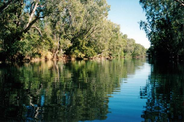 Resize of 07-20-2002 02 from canoe, Lawn Hill Creek at Adels Grove.jpg