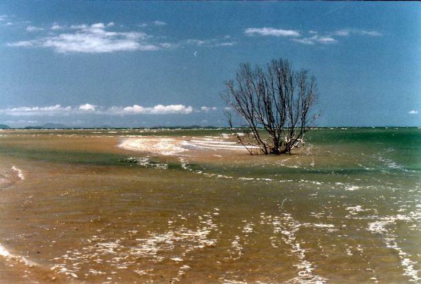 Resize of 10-24-2002 01 Midge Point scene.jpg