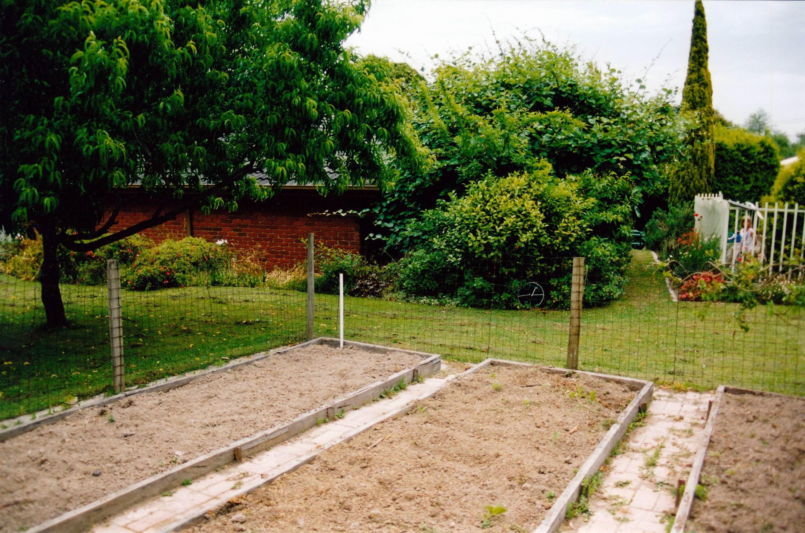 Resize of 12-21-2002 veg garden at home.jpg