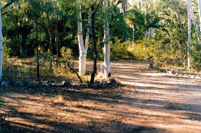 Resize of 04-27-2003 01 campsite adels grove.jpg