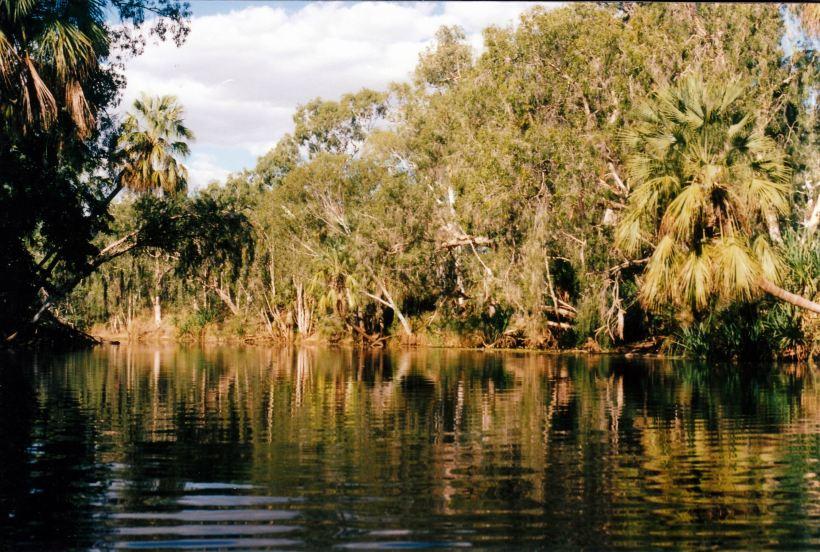 Resize of 04-27-2003 06 lawn hill creek waterhole adels.jpg