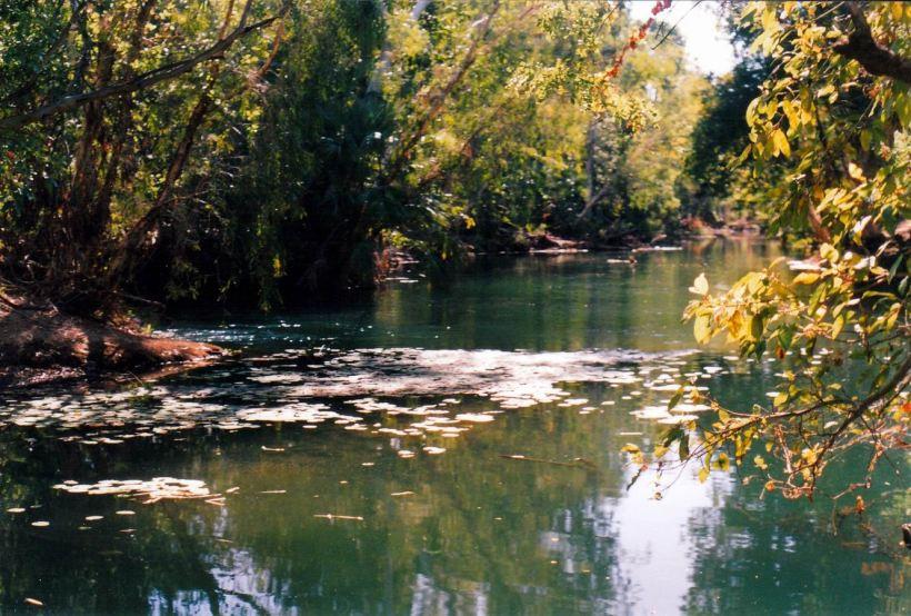 Resize of 06-01-2003 06 Waterhole by Grove.jpg