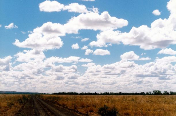 Resize of 06-01-2003 12 blacksoil plains lawn hill station