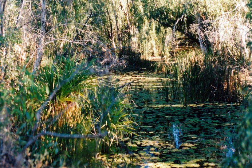 Resize of 07-24-2003 04 Louie Creek.jpg