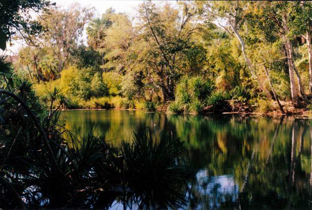 Resize of 08-15-2003 12  lawn hill creek upstream waterhole.jpg
