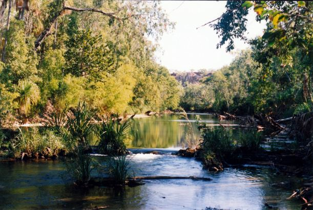 Resize of 07-10-2003 11 lawn hill creek by track to old weir.jpg
