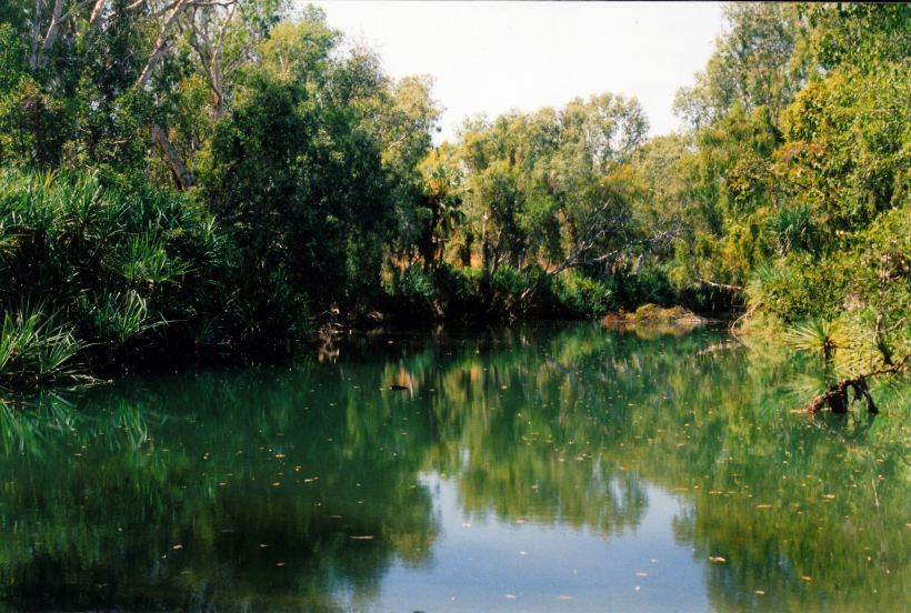 Resize of 08-23-2003 01 Crocodile waterhole on lawn hill creek.jpg