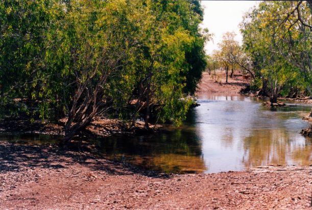 Resize of 08-23-2003 04 back track to doom crosses lawn hill creek.jpg