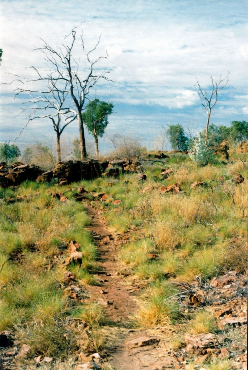 Resize of 08-30-2003 02  track up constance range nat park.jpg