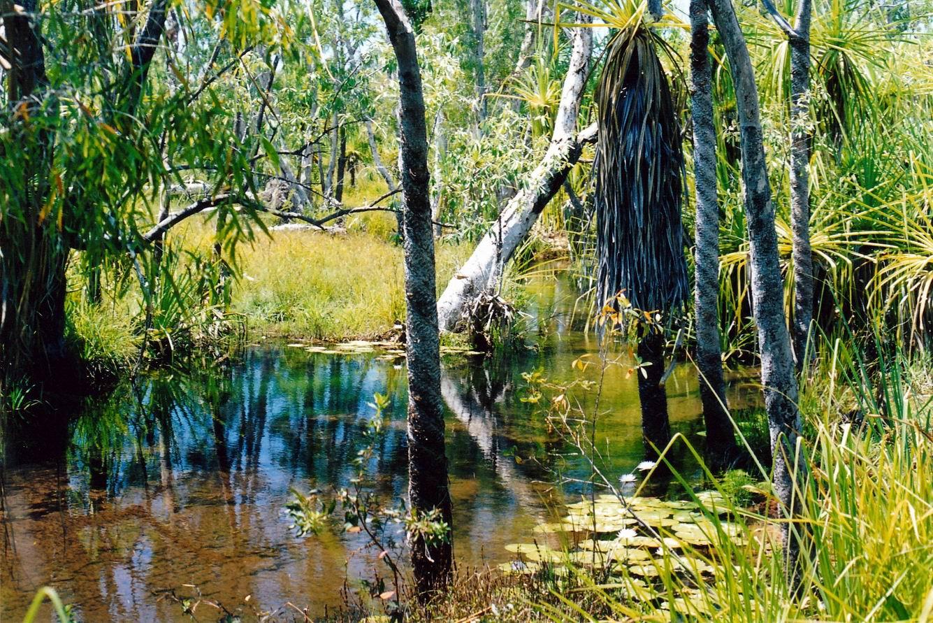 Resize of 09-19-2003 09 creek scene at safari camp.jpg