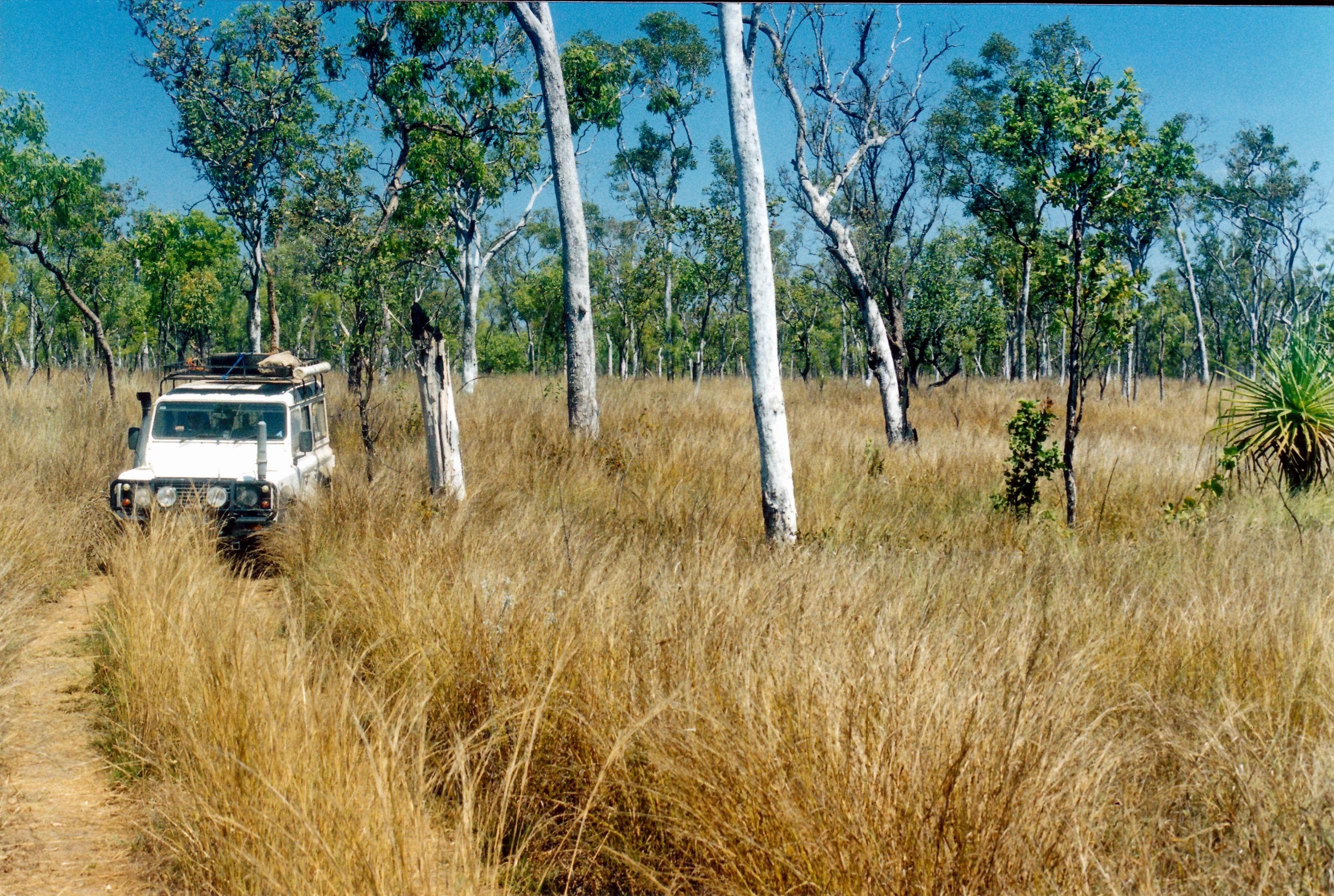 resize of 09-19-2003 17 a pungalina track