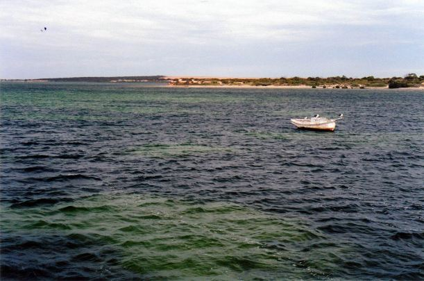 Resize of 04-14-2004 denial bay.jpg
