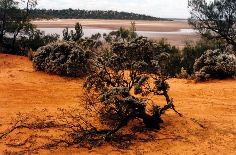 Resize of 04-16-2004 08 Googs Lake 4