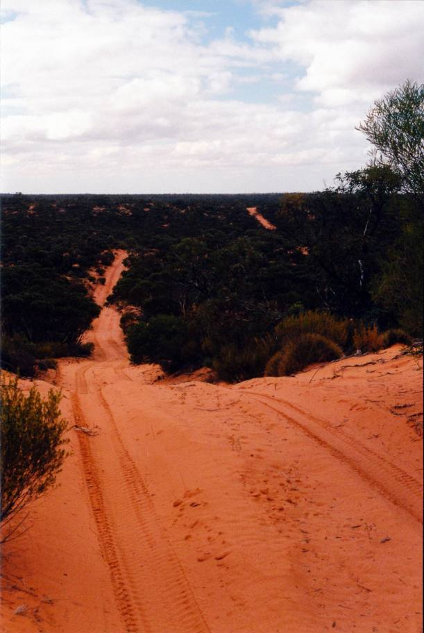 Resize of 04-16-2004 11Googs Track like Simpson Desert.jpg