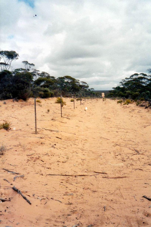 Resize of 04-16-2004 fenceline googs track