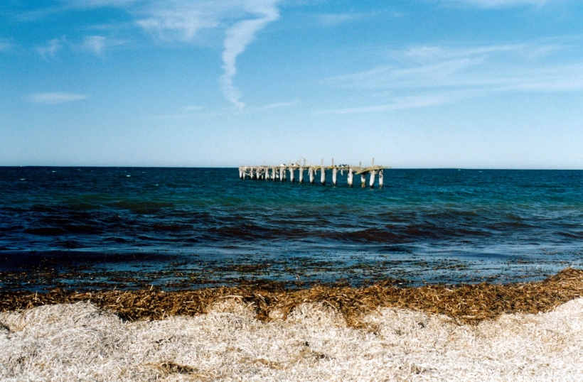 Resize of 05-06-2004 03 jetty remnants Israelite Bay.jpg