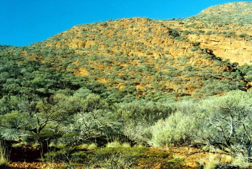 Resize of 06-26-2004 14 track goes up ridge.jpg