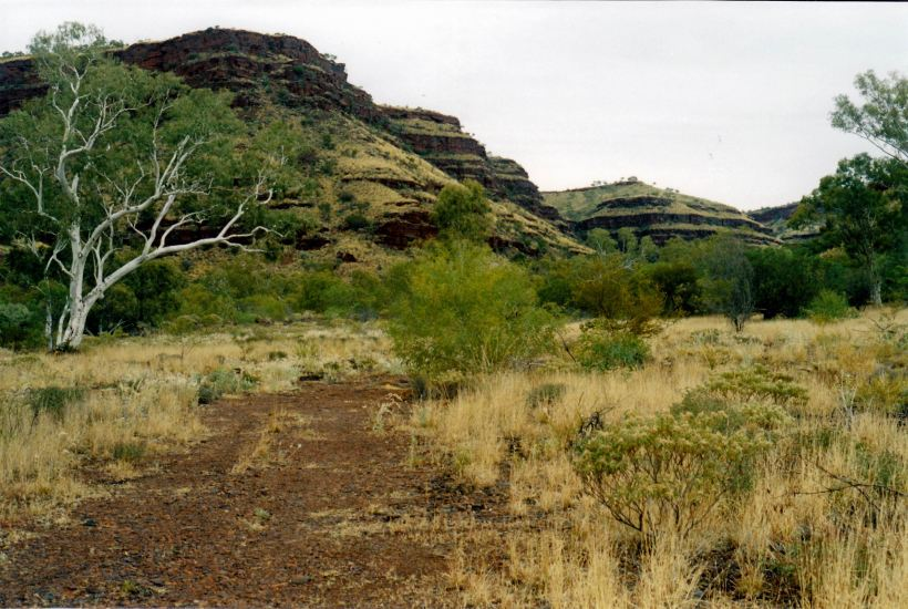 Resize of 07-16-2004 04 Wittenoom Gorge old township area.jpg