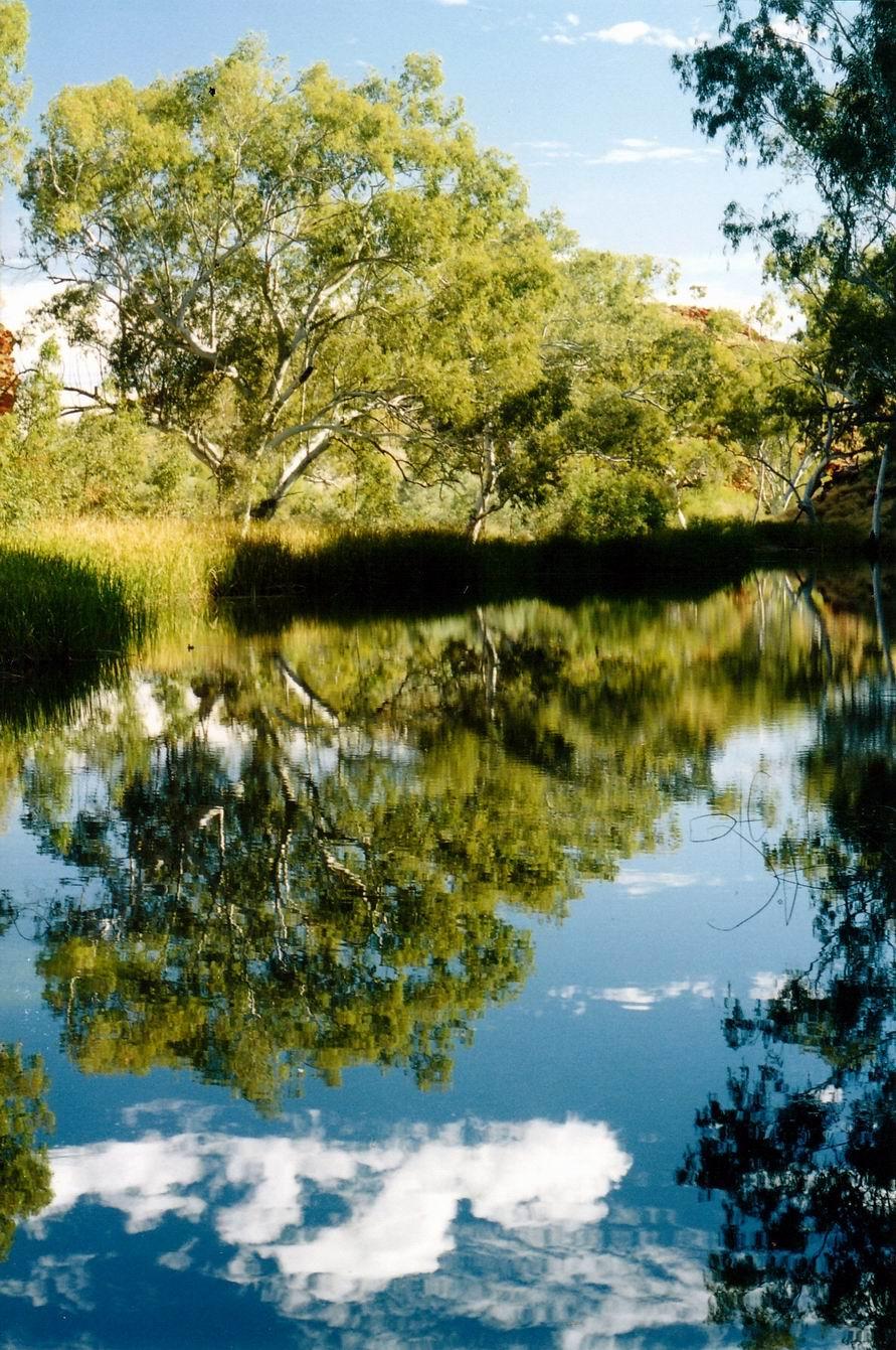 Resize of 07-24-2004 06 ww creek
