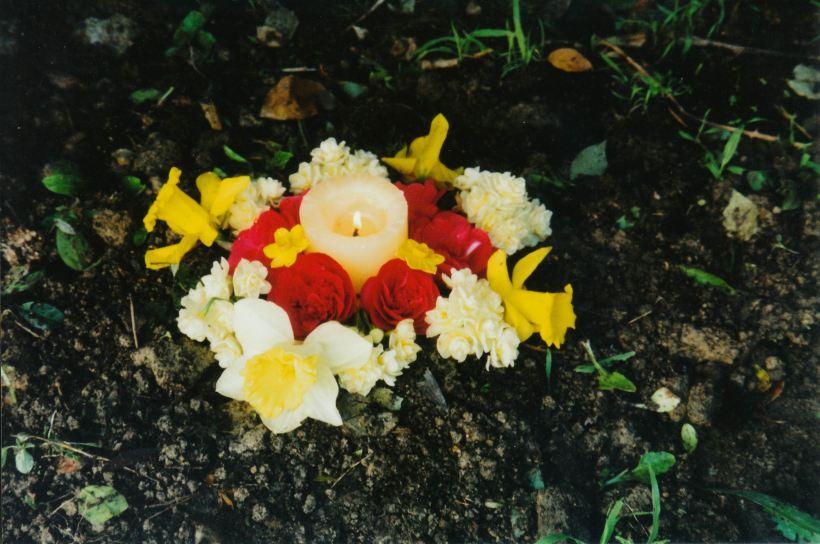 Resize of 8-11-2004 Tarz RIP.jpg