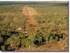 Pungalina-airstrip.jpg