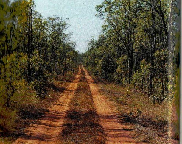 Resize of 04-10-2005 pungaqlina track.jpg