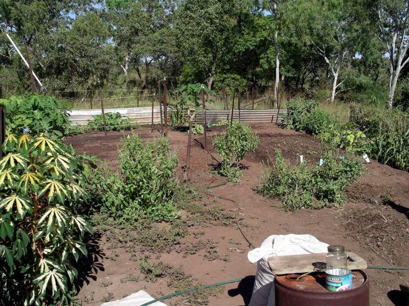 Resize of 04-17-2005 01 Establishing the Vegie Garden.JPG